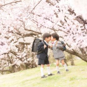 入学/卒業写真